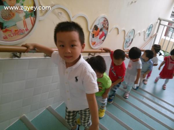 安全第一课 上下楼梯-李朝凤|幼儿园老师教学助手