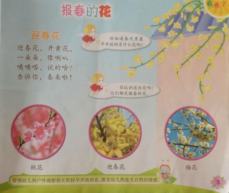 活动目标: 1、观察初春景色,感受春天的气息。 2、观察迎春花,了解迎春花的特征。 春天来了,小草绿了,美丽的鲜花也开放了。  今天带孩子们认识了迎春花,宝贝们知道了迎春花是金黄色的,长在弯弯的枝条上。迎春花先开花,后长叶,是春天里开花开的最早的植物。  之后又带孩子们去幼儿园找找春天里的花,孩子们找的可认真啦。      迎春花、桃花都是初春开的很美的花,因为它们是春天最早开放的花,所以叫报春花。大家一定要爱护这些美丽的花。