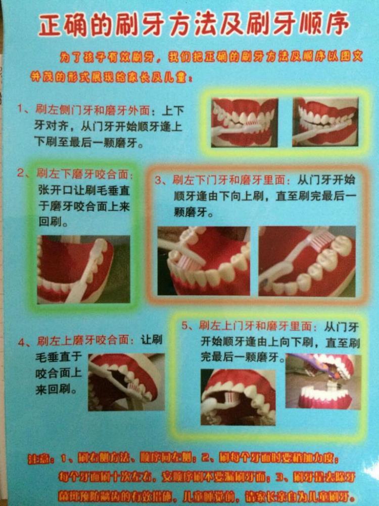 正确的刷牙方法及刷牙顺序-广东省委机关幼儿院